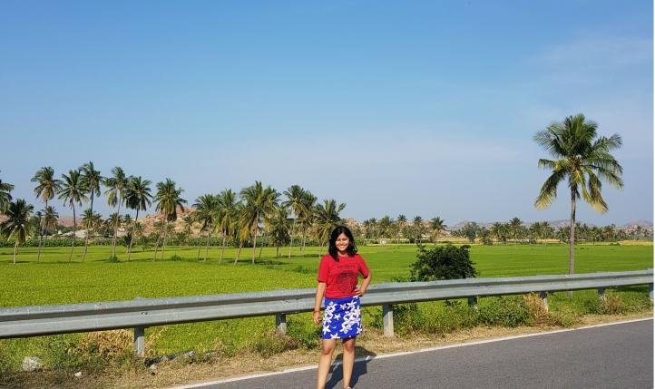 Emerald green paddy fields in the backdrop